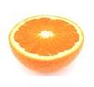 オレンジのロゴ
